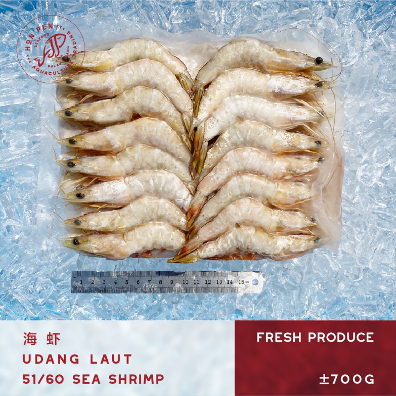 SEA SHRIMP 51/60 海虾 UDANG LAUT (Seafood) ±700g