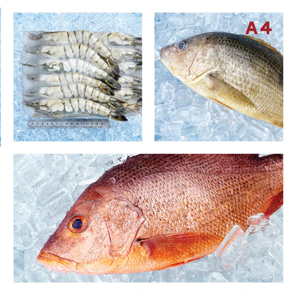 A4 9/12 BLACK TIGER 草虾 ±700g, Red Snapper 红鱼 ±700g,GOLDEN Snapper 红皂 ±700g