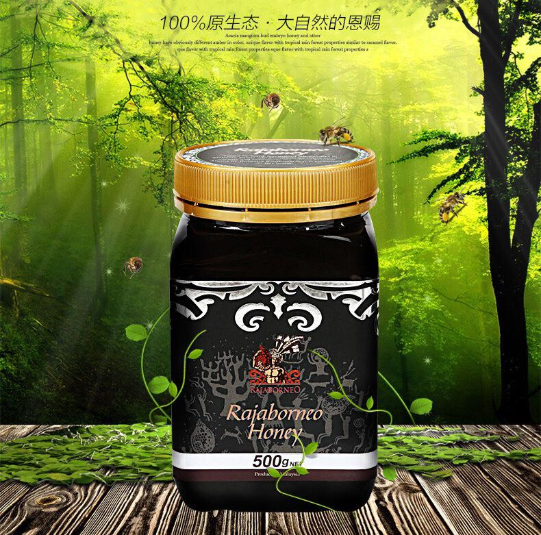 RAJABORNEO HONEY - ACACIA MANGIUM HONEY (500g) 婆罗皇原始蜂蜜