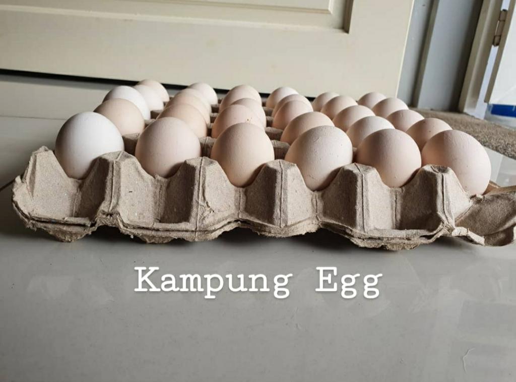 Fresh from Farm Kampung eggs