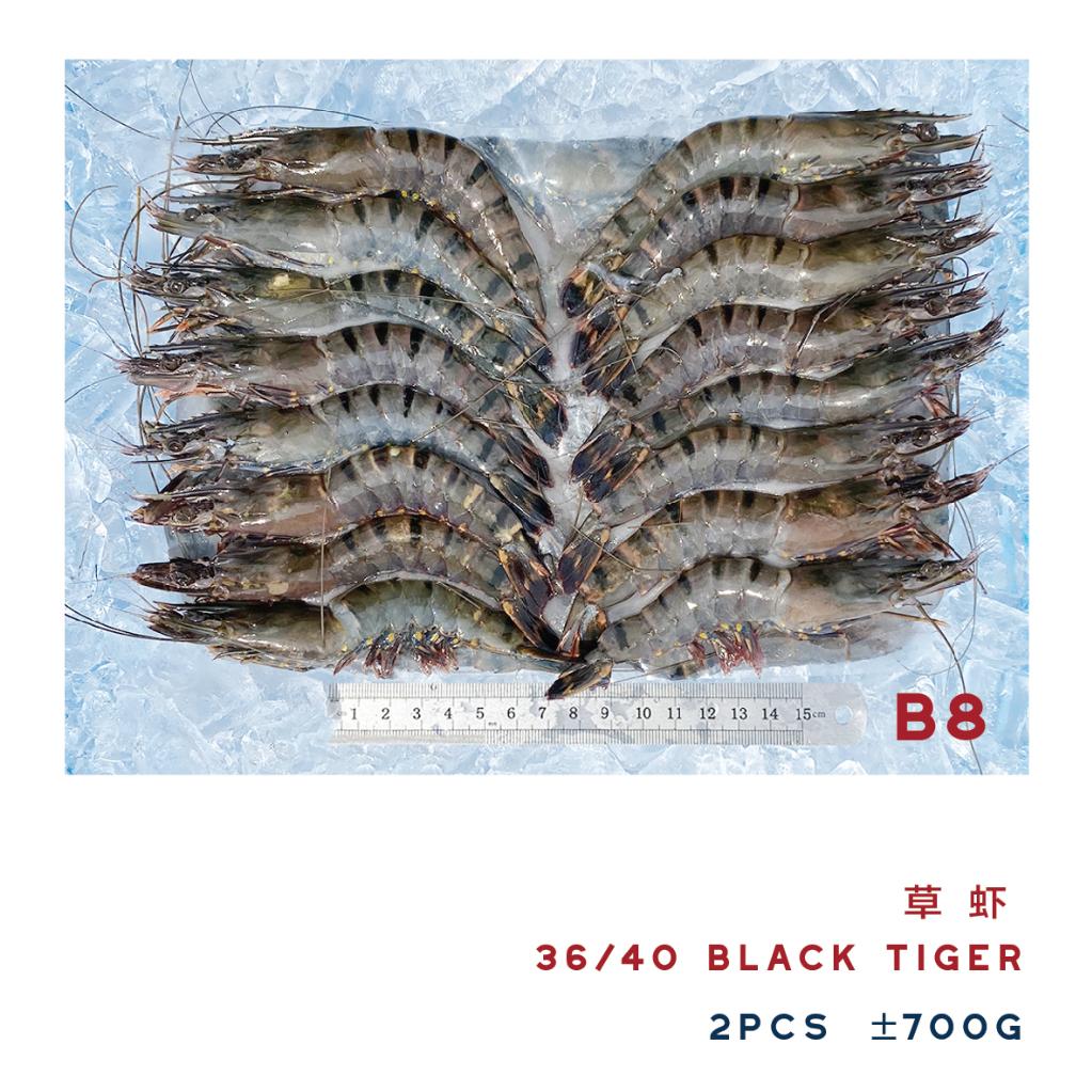 B8 36/40 BLACK TIGER 草虾 ±700g (2PCS)