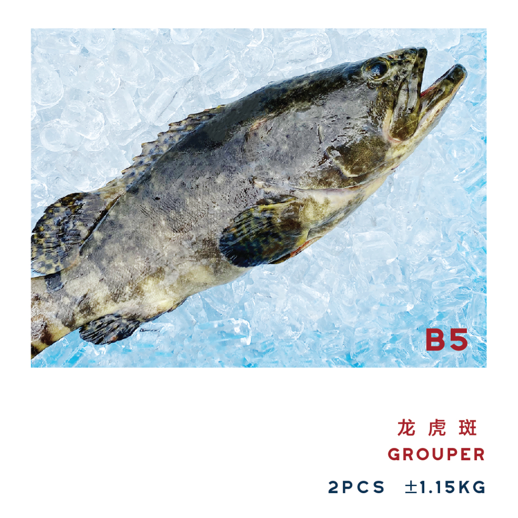 B5 GROUPER 龙虎斑 ±1.15kg (2PCS)