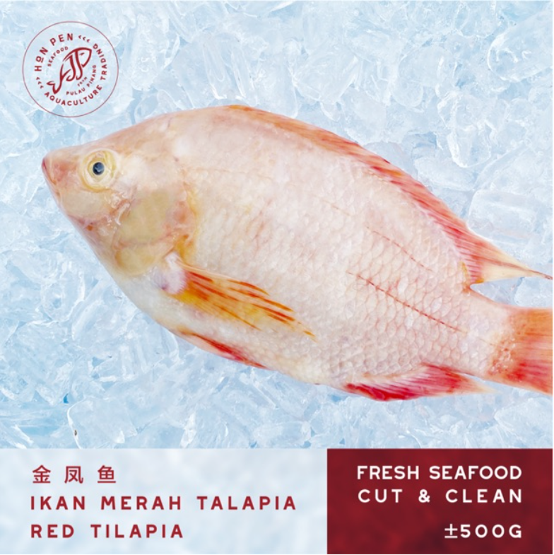 3pcs TALAPIA RED TILAPIA 金凤鱼 IKAN MERAH (Seafood) ±500g