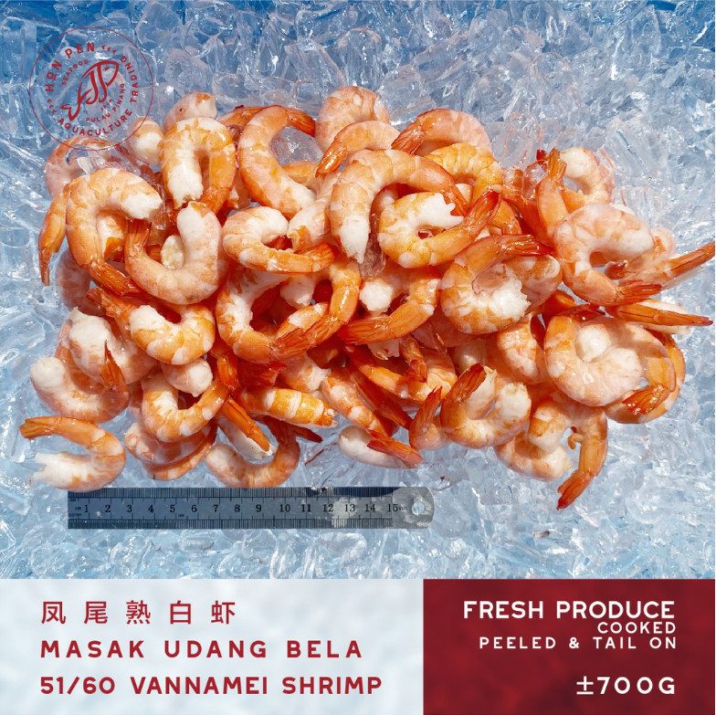 VANNAMEI SHRIMP 51/60 凤尾熟白虾 UDANG BELA (Cooked peeled, tail on) ±700g