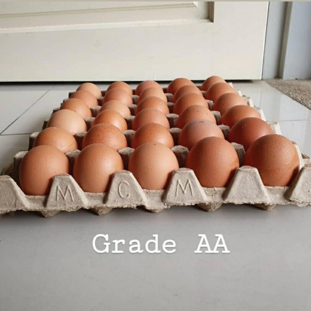 Fresh from Farm Grade AA eggs