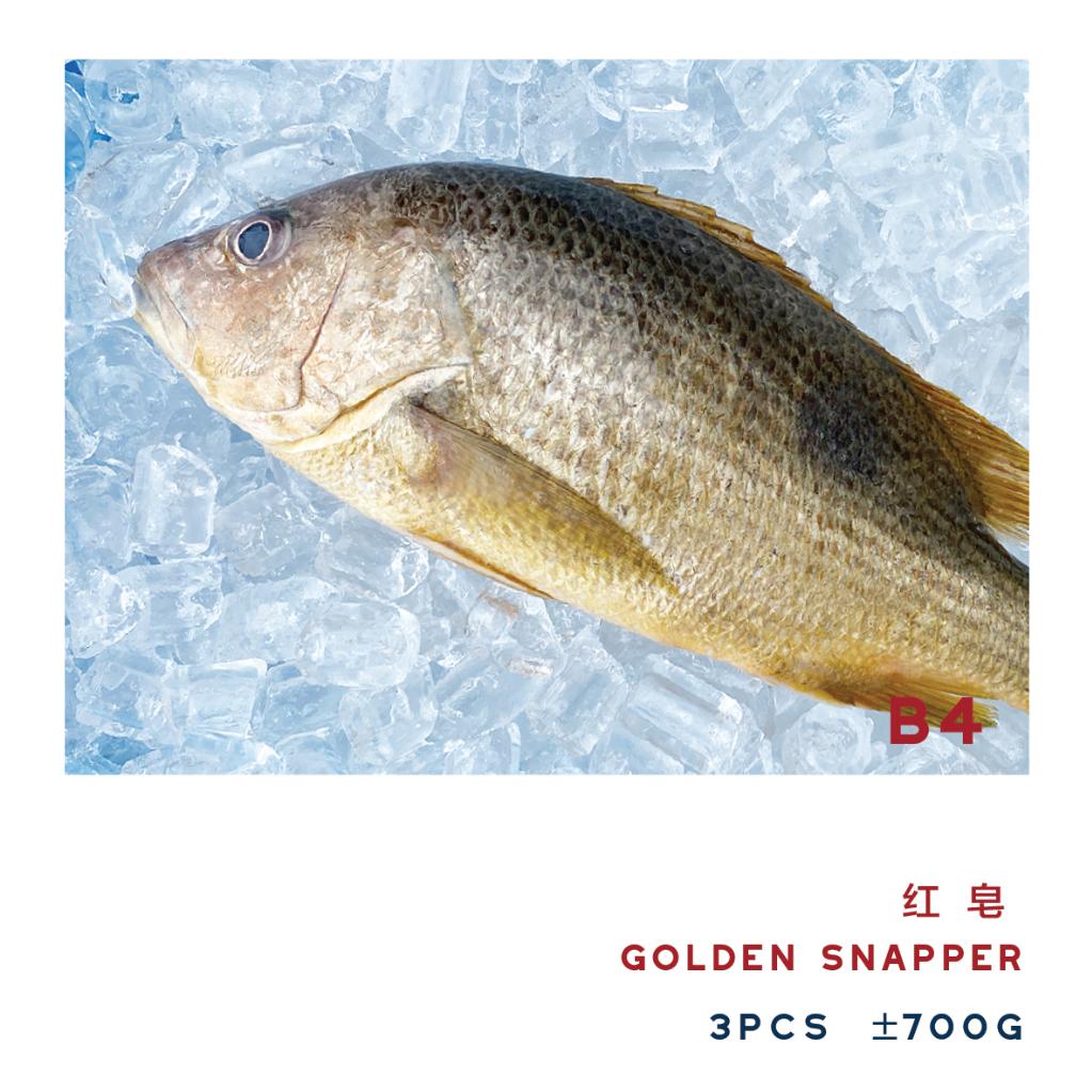 B4 GOLDEN SNAPPER 红皂 ±700g(3PCS)